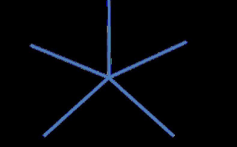 La rétrospective étoile de mer